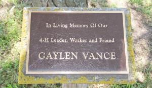 Tree - Gaylen Vance
